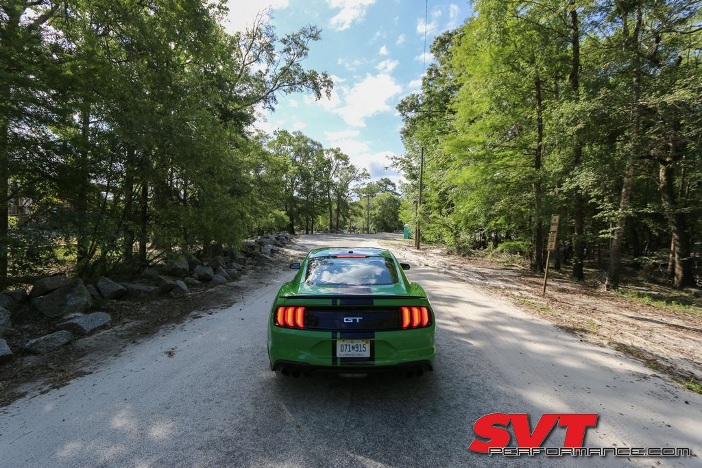 2019_Mustang_GT_PP2_018.jpg