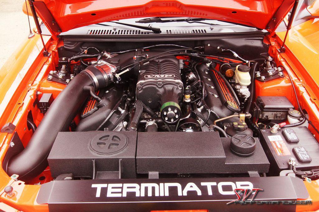 Terminator Mustang Cat Back Exhaust
