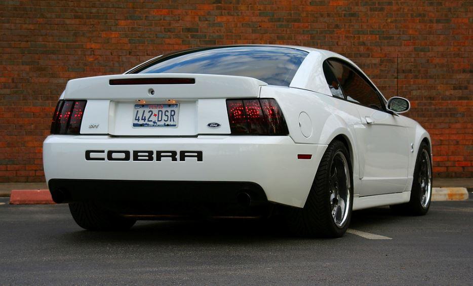 Cobra 15.JPG
