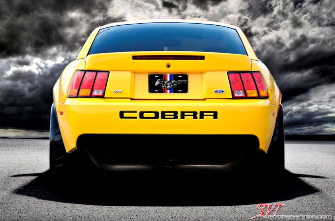 Cobra 24.JPG