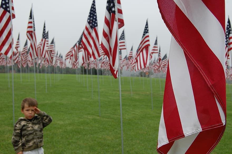 flag-usa-us-united-states-patriotic-salute-patriotism-country-stripes.jpg