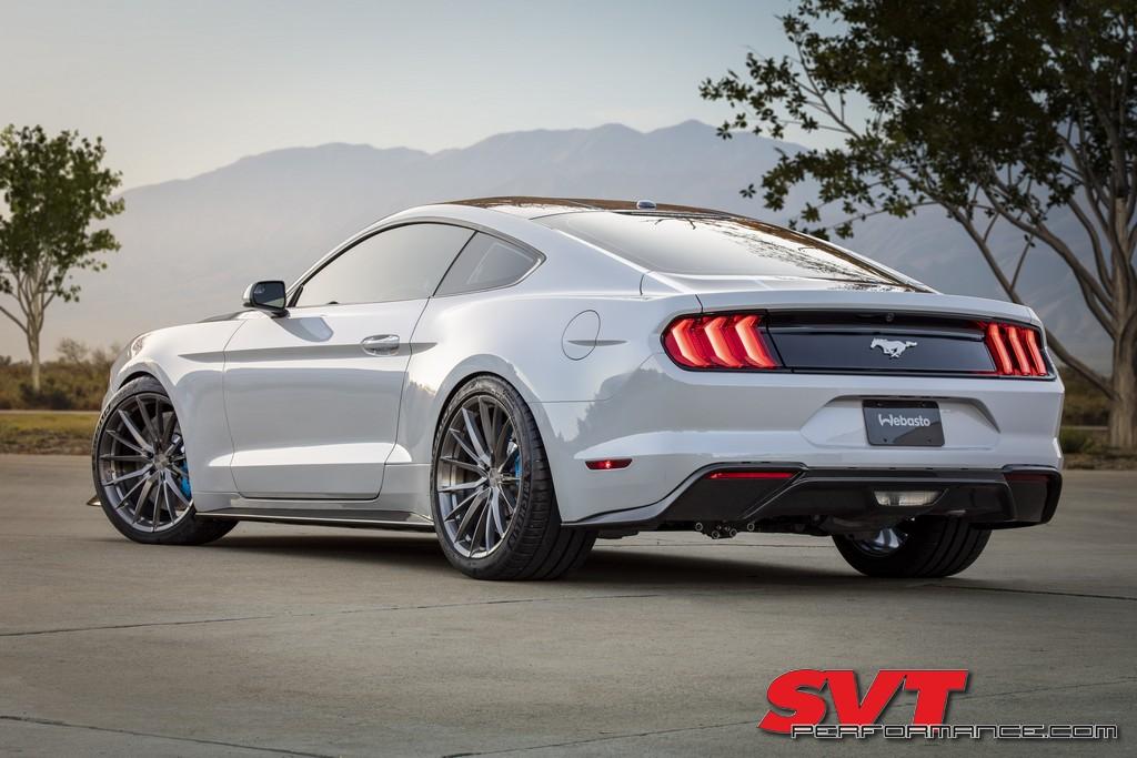 Lithium_Mustang_001.jpg