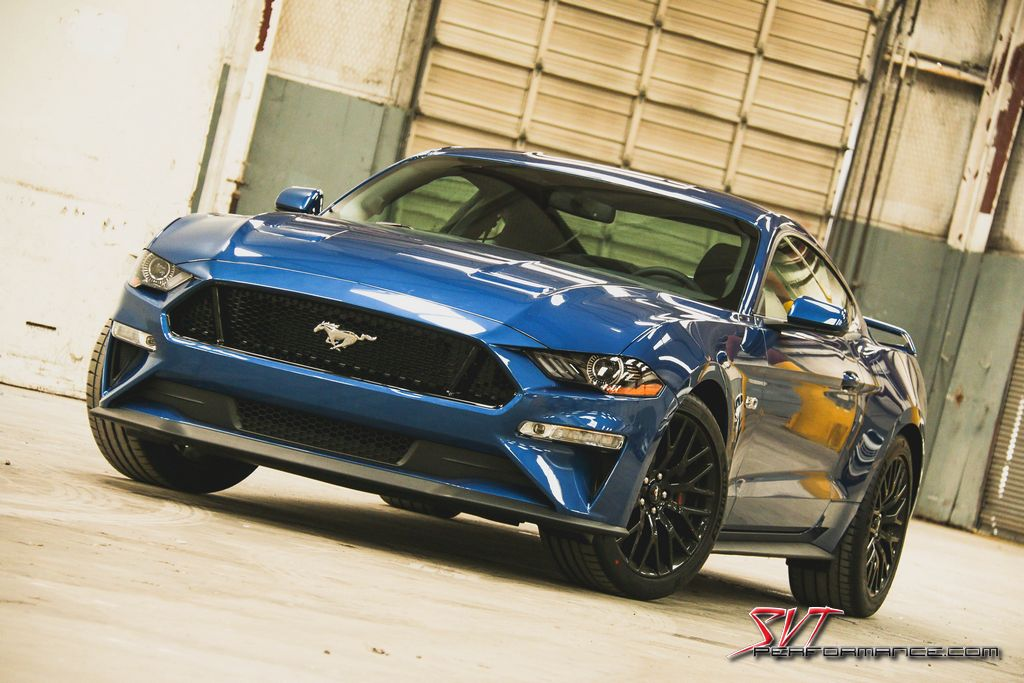LMR_2018 _Mustang_Intro_005.jpg