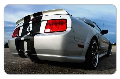 lnr_rear.jpg