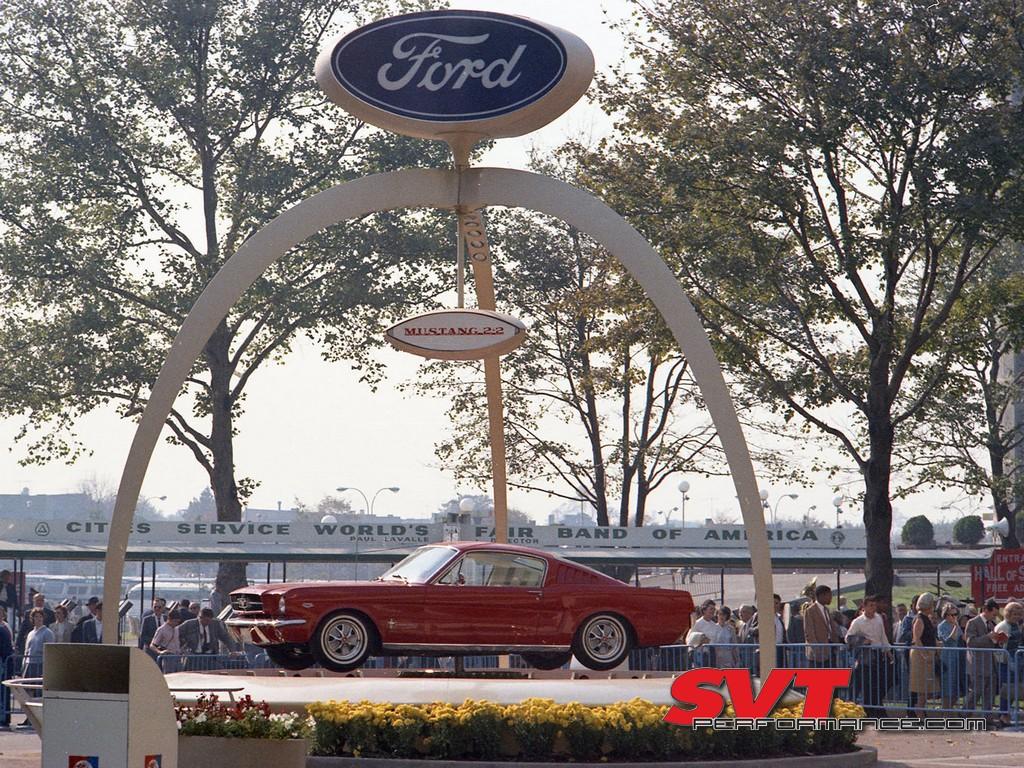 Mustang_Day_2020_001.jpg