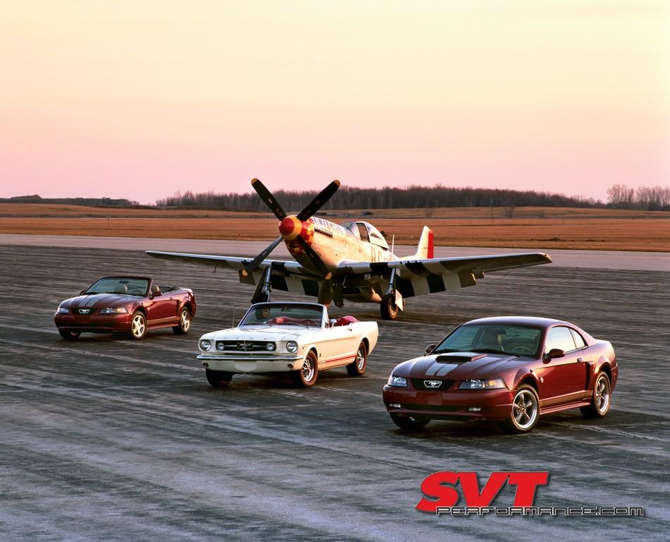 Mustang_Day_2020_007.jpg