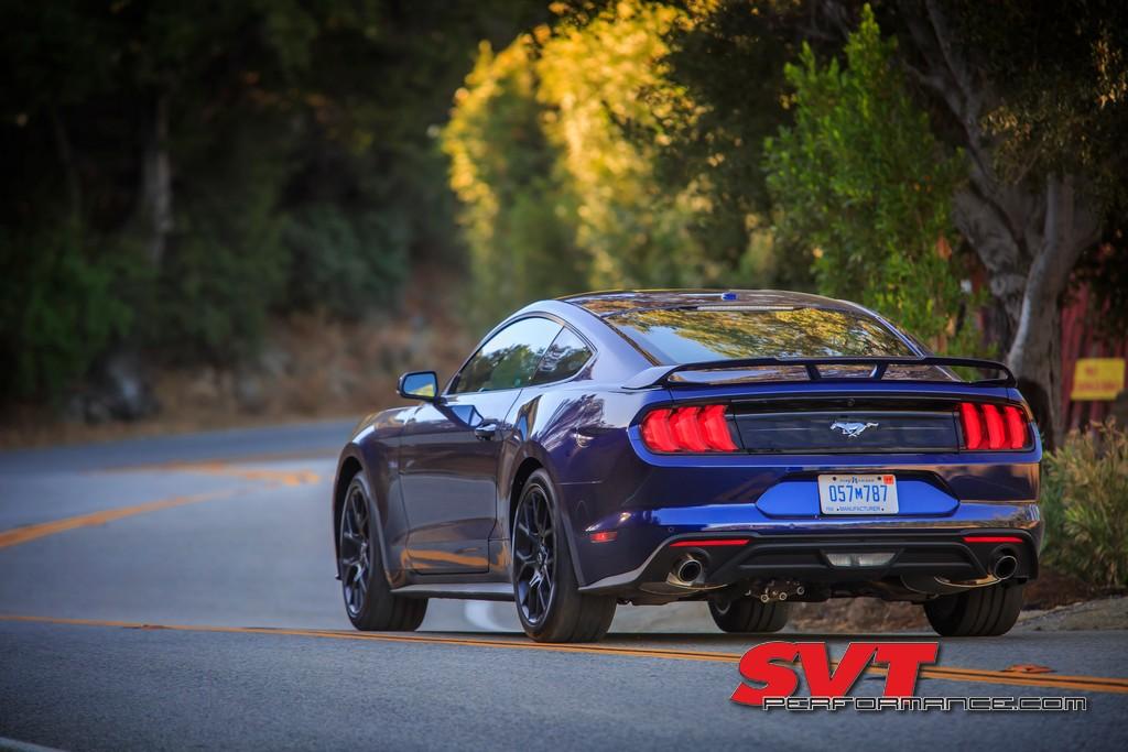 Mustang_Day_2020_011.jpg