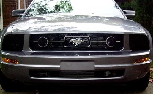 MustangDarkFront2.jpg