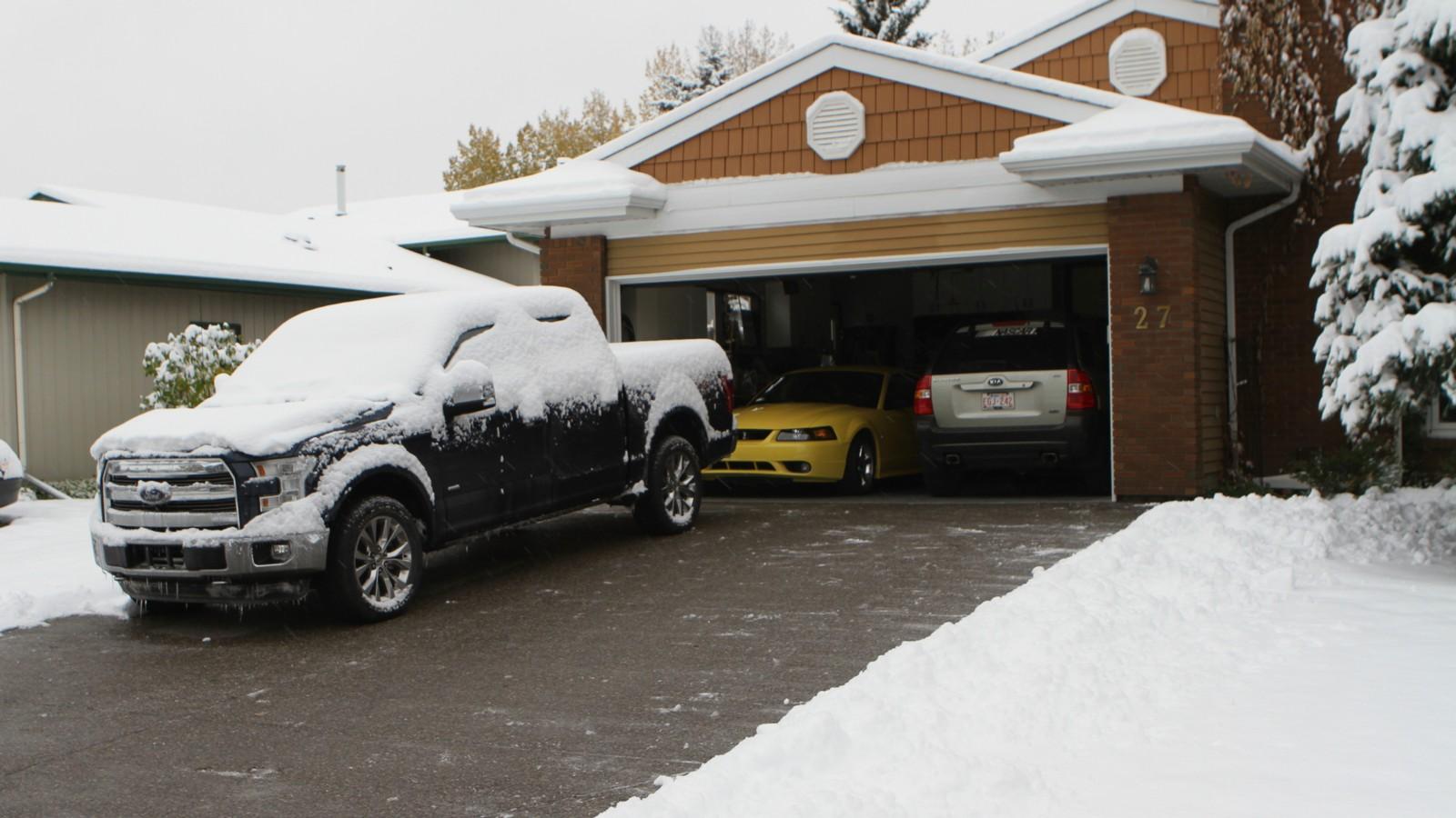 Snowy 2 LR.jpg
