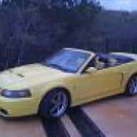 Yellow_rag