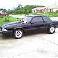 kingcobra8541