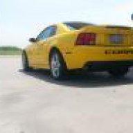 04_Yellow_Cobra